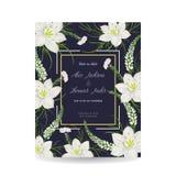 Сохраньте карточку даты с лилией eucharis, snapdragons и цветками риса Дизайн праздника флористический для wedding приглашения Стоковое фото RF