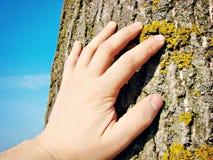 Сохраньте планету Стоковые Фотографии RF