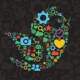 Социальная иллюстрация птицы средств массовой информации иллюстрация штока