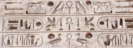 Сочинительство иероглифа в Medinet Habu, Луксоре Стоковая Фотография RF