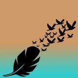 сочинитель принципиальной схемы птицы помещенный пером белый стоковое фото
