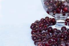 Сочная охлаженная ягода смородины готова заполнить вас с прохладой и свежестью Насладитесь вашей едой стоковое изображение