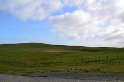 Сочное зеленое травянистое поле с пушистыми белыми облаками в Ирландии Стоковое фото RF