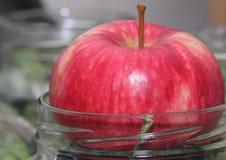 Сочное зрелое красное Яблоко стоит на шеи опарника, жать на зима, консервация плода стоковая фотография rf