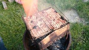 Сочное мясо зажарено на угле акции видеоматериалы