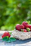 Сочные клубники в деревянном столе плетеной корзины, против фона красивого сада зеленого цвета предпосылки Стоковые Фото