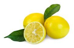 сочные лимоны Стоковое Изображение