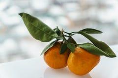 Сочные оранжевые tangerines на defocused белизны предпосылке outdoors Стоковые Изображения