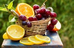 Сочные свежие фрукты в корзине Стоковые Изображения RF