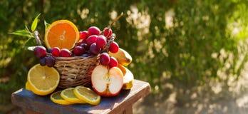 Сочные свежие фрукты в корзине Стоковая Фотография