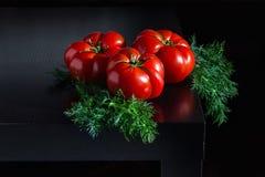 Сочные томаты с укропом на деревянной темной предпосылке Стоковое Изображение RF