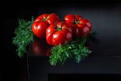 Сочные томаты с укропом на деревянной темной предпосылке Стоковое Фото