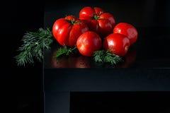 Сочные томаты с dropletson укропа и воды деревянная темная предпосылка Стоковое фото RF