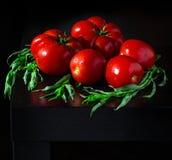 Сочные томаты с dropletson estragon и воды деревянная темная предпосылка Стоковые Фото