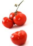 сочные томаты Стоковое Изображение RF