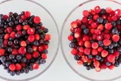 Сочные ягоды в шаре Голубика и одичалая клубника Стоковые Фото