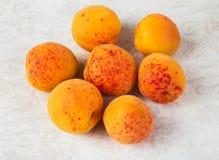 Сочный большой апельсин Стоковые Изображения