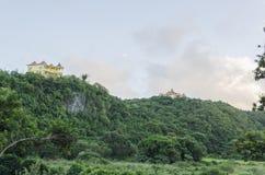 Сочный зеленый холмистый ландшафт стоковые изображения rf