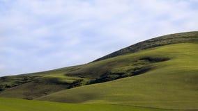 Сочный зеленый холмистый выгон Стоковое фото RF