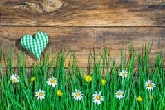Сочный луг с красивыми цветками и зеленый цвет проверили сердце на деревенской деревянной предпосылке с космосом экземпляра Стоковое Изображение RF