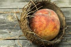 Сочный персик в раковине кокоса на деревянной предпосылке, месте для крупного плана текста Стоковые Изображения RF