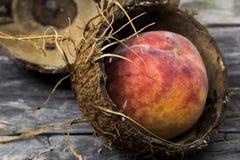 Сочный персик в раковине кокоса на деревянной предпосылке, месте для крупного плана текста Стоковая Фотография RF