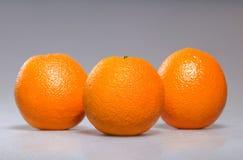 сочный помеец Стоковая Фотография RF
