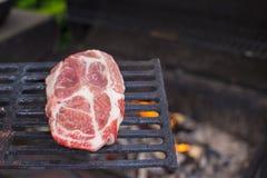 Сочный сырцовый стейк на предпосылке барбекю внешней Стоковые Изображения RF