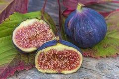 Сочный фиолетовый плодоовощ смоквы Стоковое Изображение