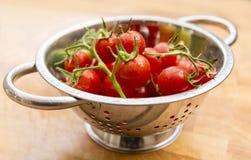 Сочным лоза-созретые красным цветом томаты вишни Стоковое Фото