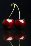 2 сочных свежих вишни на черной предпосылке Стоковые Изображения