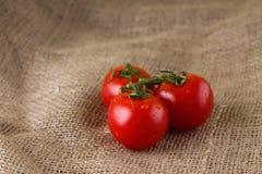 3 сочных томата на ткани джута Стоковые Изображения RF