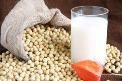 соя молока фасолей Стоковое Фото