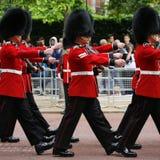 Солдат ферзя на параде дня рождения ферзя Стоковые Фото