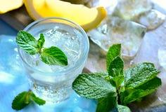Сода мяты и лимона стоковое изображение