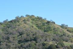 Солнечная верхняя часть горы стоковое фото rf