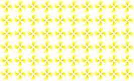 Солнечная картина Стоковые Изображения