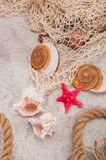 Солнечная тропическая тема пляжа Стоковое фото RF