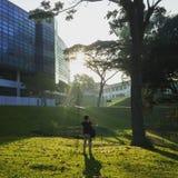 Солнечное затмение силуэта Стоковое Изображение