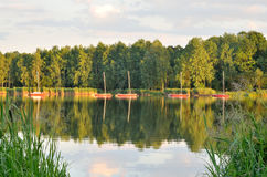 Солнечное после полудня озером Стоковые Изображения RF