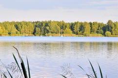 Солнечное после полудня озером Стоковые Фото