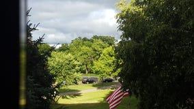 Солнечность на зеленых деревьях Стоковые Изображения RF