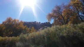 Солнечность осени Стоковое Изображение RF