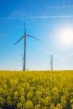 Солнечность, рапс и windwheels Стоковое Изображение