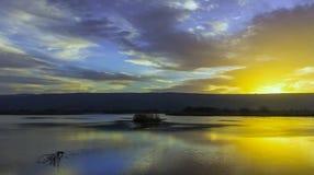Солнечность Стоковая Фотография