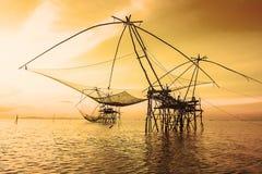 Солнечность Fisher на озере Стоковые Фото