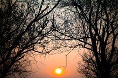солнечно Стоковые Фотографии RF