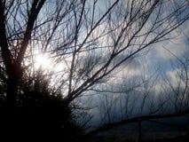 солнечно Стоковая Фотография
