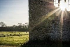 Солнечные руины стоковое фото