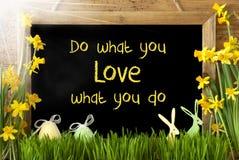 Солнечные Narcissus, пасхальное яйцо, зайчик, цитата делают чего вы любите Стоковое Фото